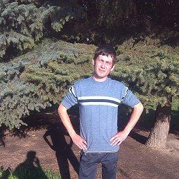 Игорь, 28 лет, Лубны