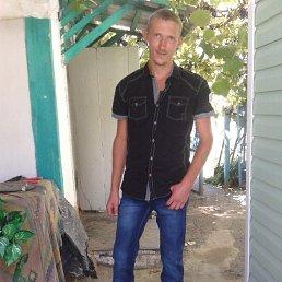 Дмитрий, 29 лет, Мостовской