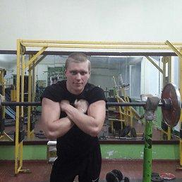 Денис, 24 года, Барышевка