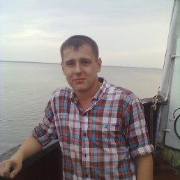 никита, 29 лет, Каневская