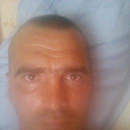 Андрей, 42 года, Купянск Узловой