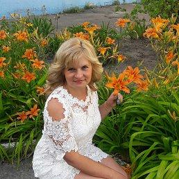 Елена, 41 год, Киев