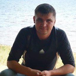 Алекс, 38 лет, Красный Холм