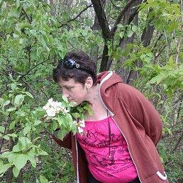 Елена, 49 лет, Чертково
