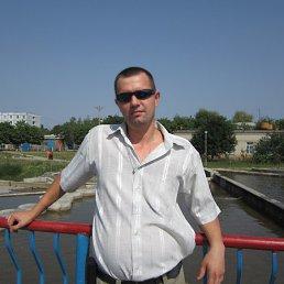 Владимир, 42 года, Нетишин