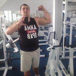 Дмитро, 25 лет, Сарны