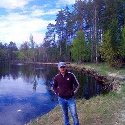Вова, 27 лет, Тячев