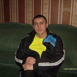 Ринат, 51 год, Шилово