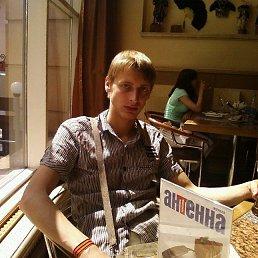 Владимир, 29 лет, Воронеж