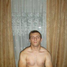 Андрей, 27 лет, Тальное
