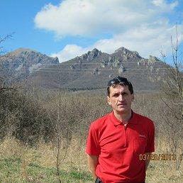 Николай, 52 года, Воронеж