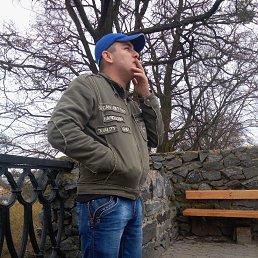 Иван, 29 лет, Новоград-Волынский