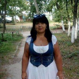 Елена, 48 лет, Курск