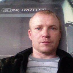 игорь, 37 лет, Пестово