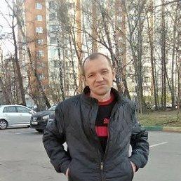 Сергей, 39 лет, Золотое