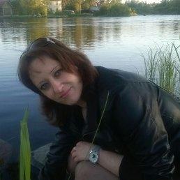 Анна, 36 лет, Приозерск