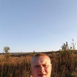 Андрей, 29 лет, Кураховка