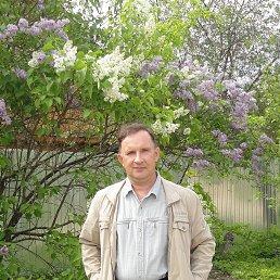николай, 56 лет, Остров