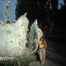 Светлана, 42 года, Васильков