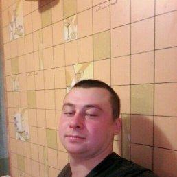 Коля, 26 лет, Лосиновка
