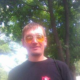 Рома, 34 года, Звенигородка