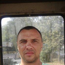 Фото Evgeniy, Киров, 42 года - добавлено 4 сентября 2017