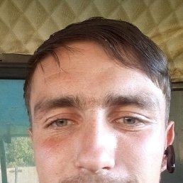 Віталя, 28 лет, Ромны
