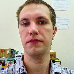 Илья, Краснодар, 28 лет