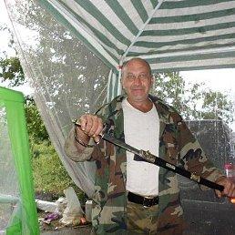 Александр, 60 лет, Воронеж