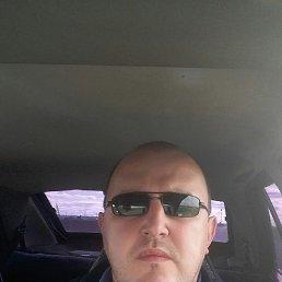 Рамиль, 41 год, Камское Устье