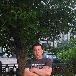 Артем, Жарковский, 38 лет