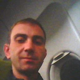 Евгений, 36 лет, Лодейное Поле