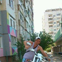 Алексей, 29 лет, Раменское