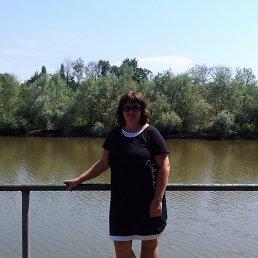 Фото Людмила, Краснодар, 51 год - добавлено 25 июля 2017