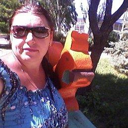 Alena, 40 лет, Дружковка