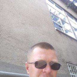 Антон, 35 лет, Березайка