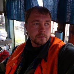 алексей, 35 лет, Кингисепп