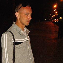 Andrey, 29 лет, Лосино-Петровский