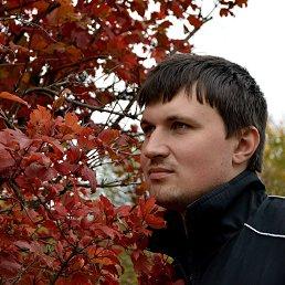 Евгений, 31 год, Комсомольское