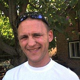 Сергей, 45 лет, Балаклея