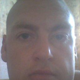 Николай, 29 лет, Новокубанск