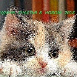 Фото ***Y, Москва - добавлено 27 ноября 2017