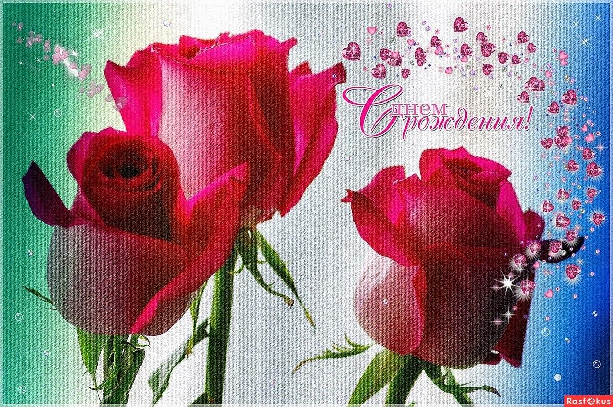 время чихания цветы для гали картинки всех любителей домашнего