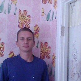 Саша, 36 лет, Корюковка