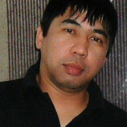 Алишер, 46 лет, Москва