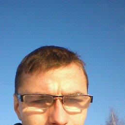 Анатолий, 29 лет, Талдом