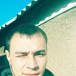 Антон, 24 года, Красноармейск