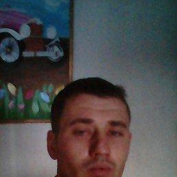 Григорий, 29 лет, Заринск