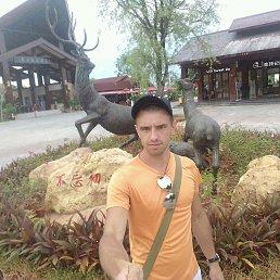 Павел, 29 лет, Ступино