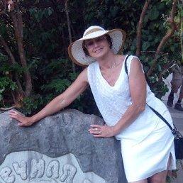 Елена, 62 года, Боровичи
